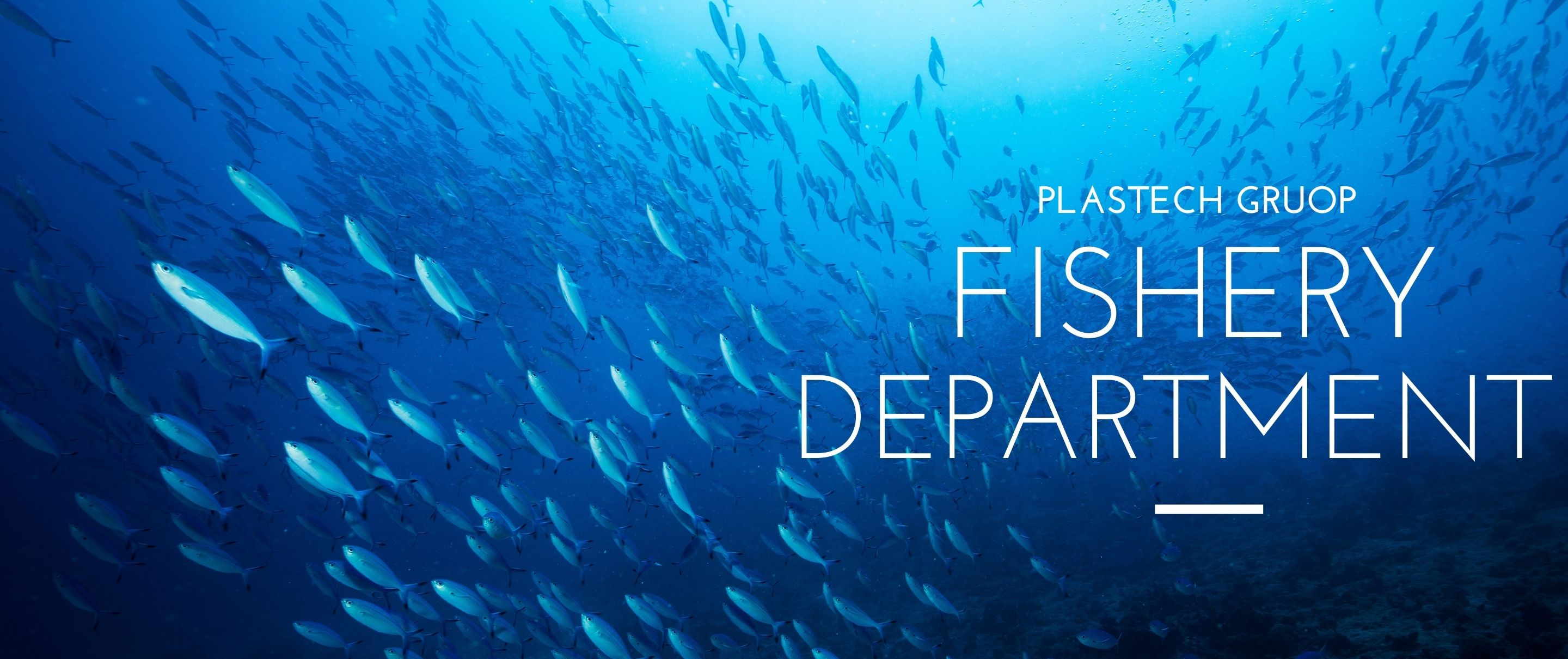 PLASTECH GROUP - FISHERY DEPARTMENT